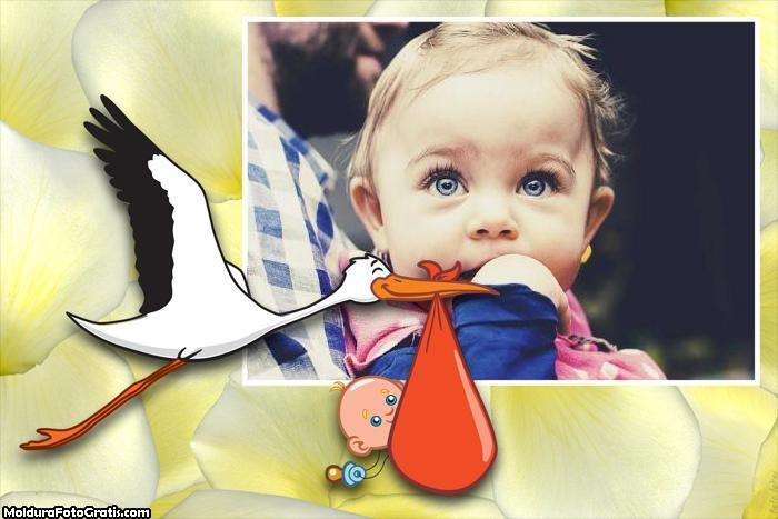 Cegonha com Bebê Moldura