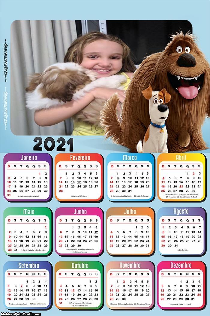Calendário Pets A vida secreta dos Pets 2021
