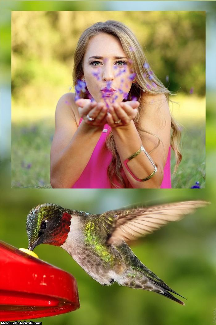 Moldura Beija-Flor