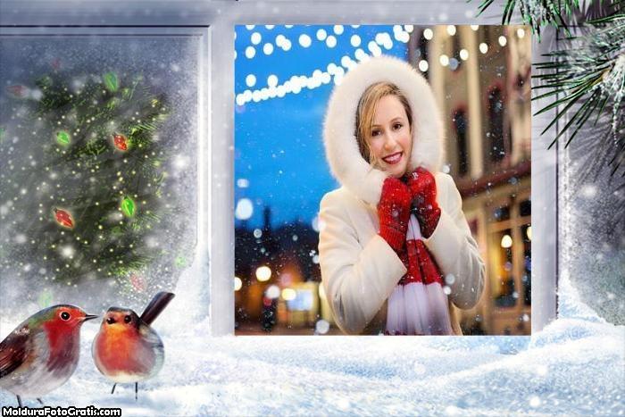 Passarinhos no Natal Moldura