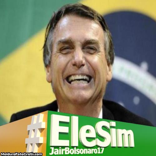 EleSim Moldura