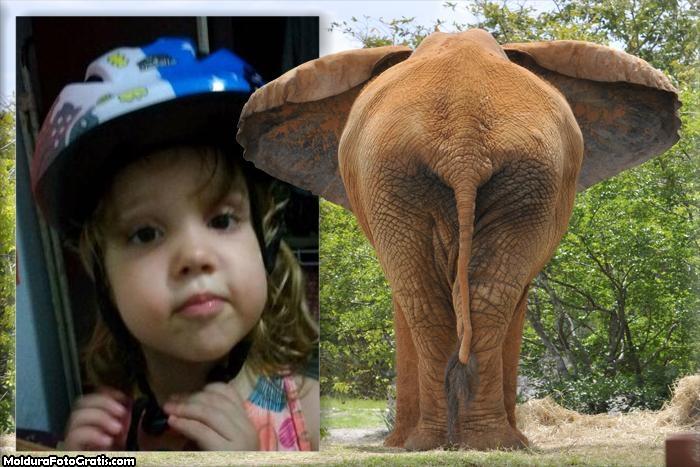 FotoMoldura Elefante