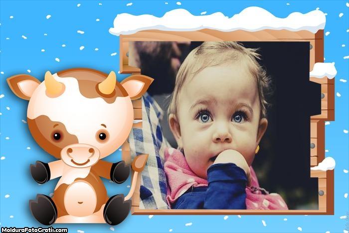 Boi Bebê Moldura