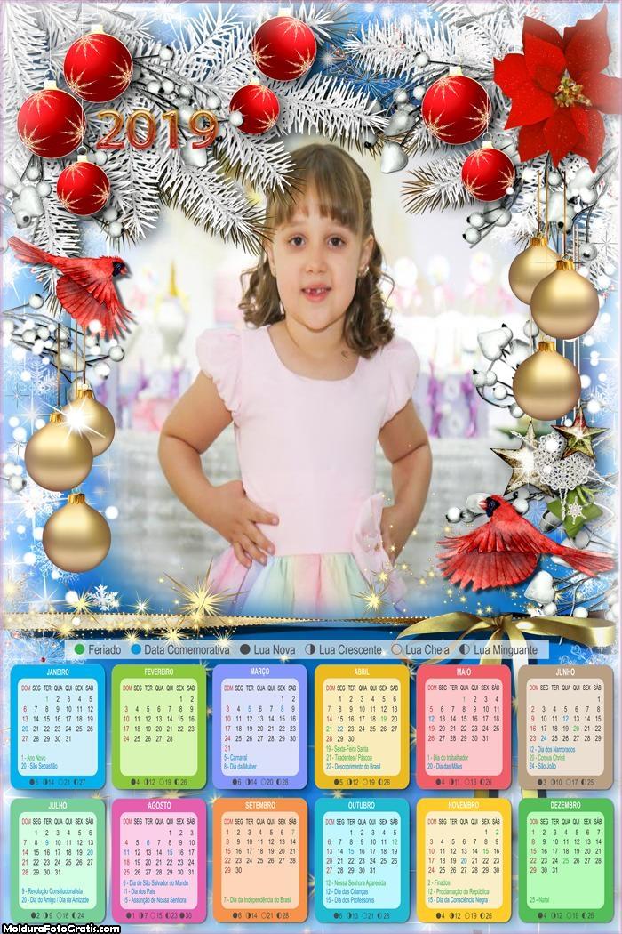 Calendário Passáro do Natal 2019