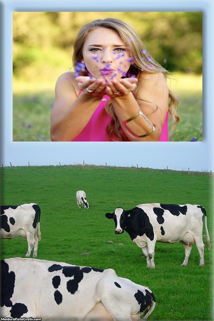 Vaca Leiteira no Campo Moldura