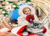 Gato no Gorro do Papai Noel Moldura