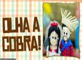 Olha a Cobra Moldura Festa Junina