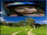 FotoMoldura Estrada Para a Fazenda